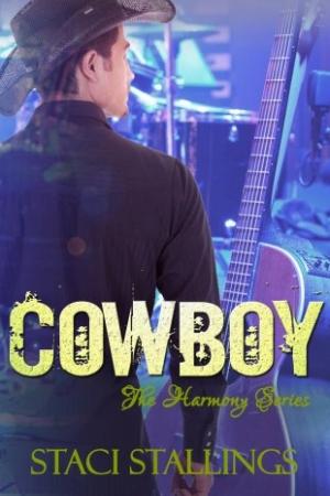cowboy-new-2-2014
